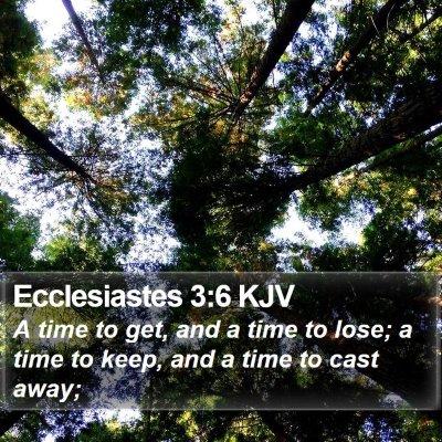 Ecclesiastes 3:6 KJV Bible Verse Image