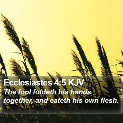 Ecclesiastes 4:5 KJV Bible Verse Image