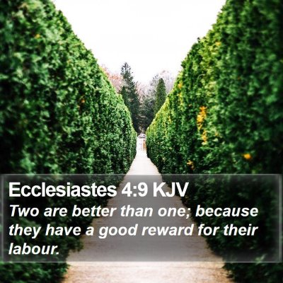 Ecclesiastes 4:9 KJV Bible Verse Image