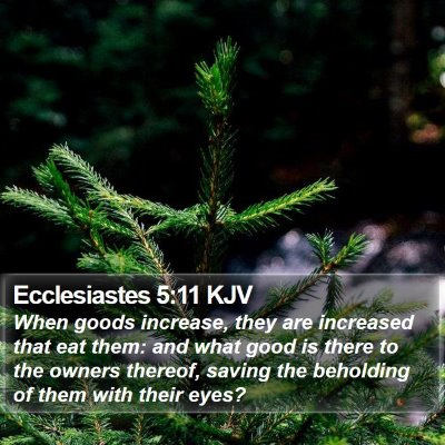 Ecclesiastes 5:11 KJV Bible Verse Image