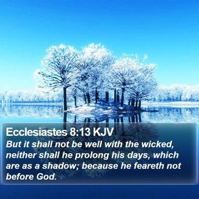 Ecclesiastes 8:13 KJV Bible Verse Image