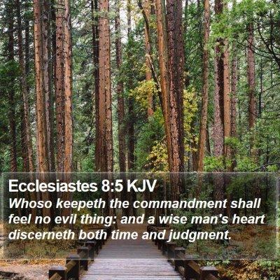 Ecclesiastes 8:5 KJV Bible Verse Image