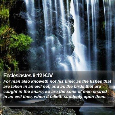 Ecclesiastes 9:12 KJV Bible Verse Image