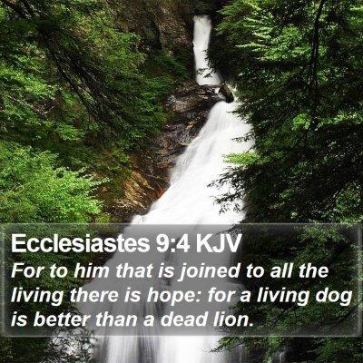 Ecclesiastes 9:4 KJV Bible Verse Image
