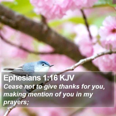 Ephesians 1:16 KJV Bible Verse Image