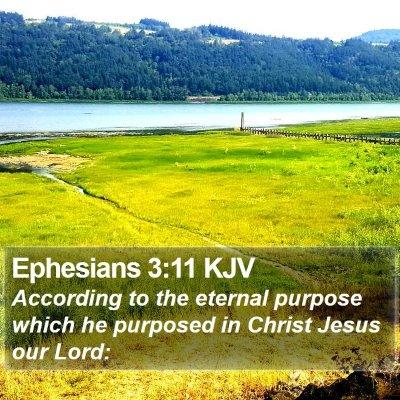 Ephesians 3:11 KJV Bible Verse Image