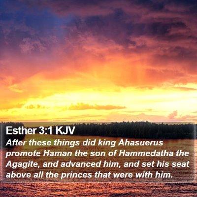 Esther 3:1 KJV Bible Verse Image