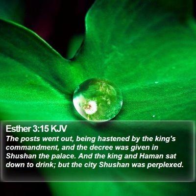 Esther 3:15 KJV Bible Verse Image