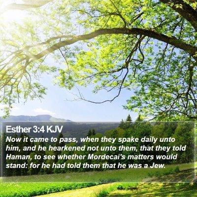 Esther 3:4 KJV Bible Verse Image