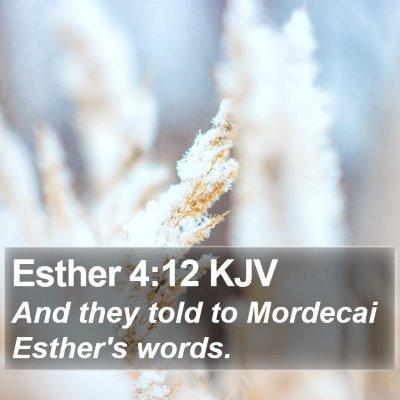 Esther 4:12 KJV Bible Verse Image