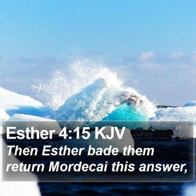 Esther 4:15 KJV Bible Verse Image