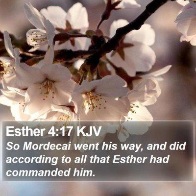 Esther 4:17 KJV Bible Verse Image