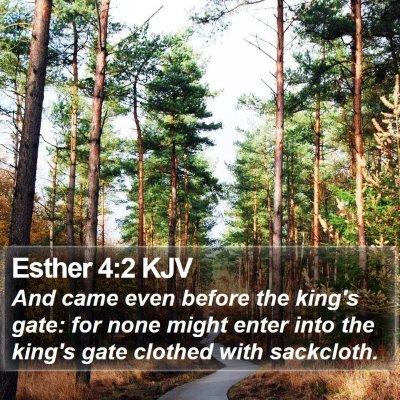 Esther 4:2 KJV Bible Verse Image
