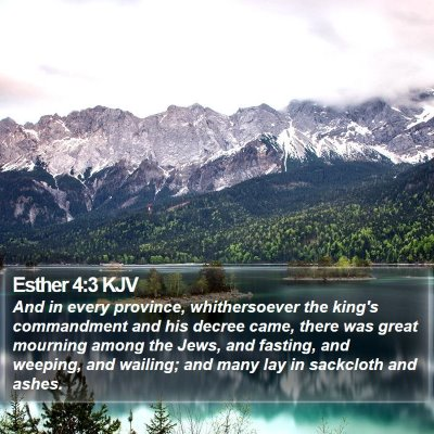 Esther 4:3 KJV Bible Verse Image