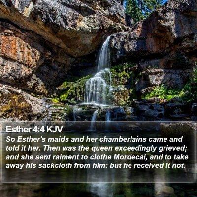 Esther 4:4 KJV Bible Verse Image