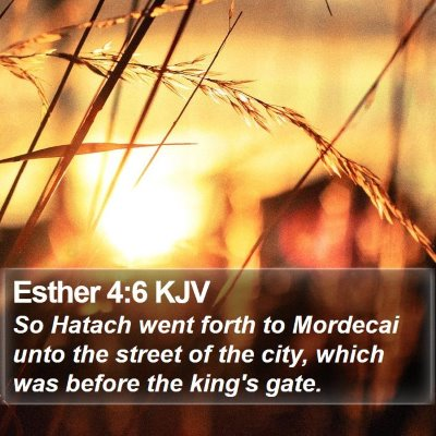 Esther 4:6 KJV Bible Verse Image
