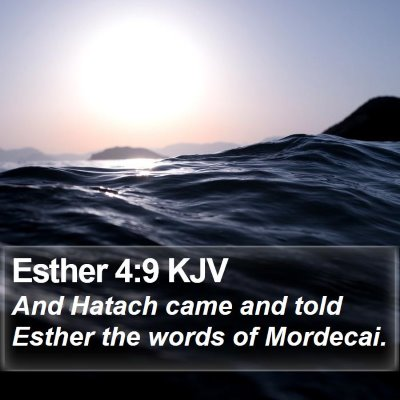 Esther 4:9 KJV Bible Verse Image
