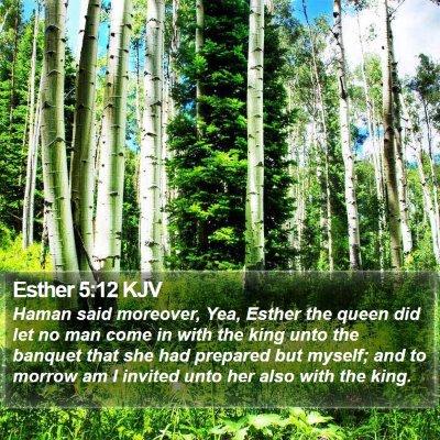 Esther 5:12 KJV Bible Verse Image