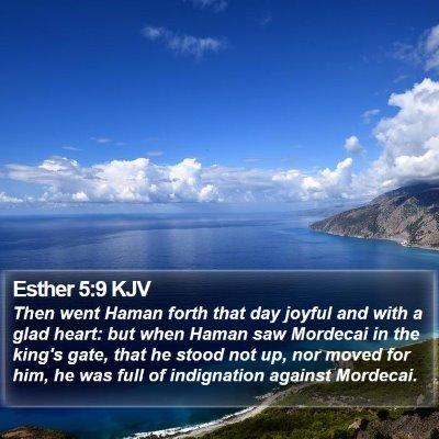 Esther 5:9 KJV Bible Verse Image