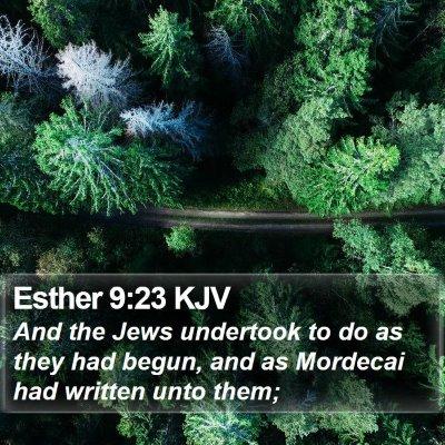 Esther 9:23 KJV Bible Verse Image