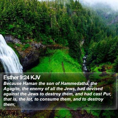 Esther 9:24 KJV Bible Verse Image