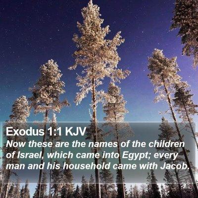 Exodus 1:1 KJV Bible Verse Image