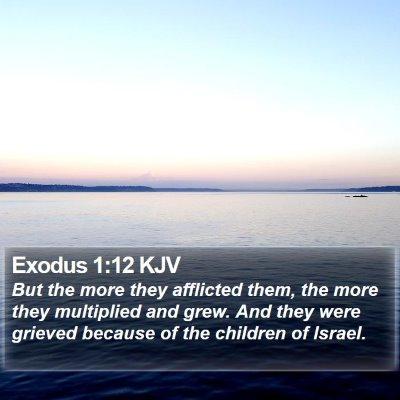 Exodus 1:12 KJV Bible Verse Image