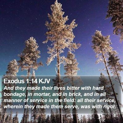 Exodus 1:14 KJV Bible Verse Image