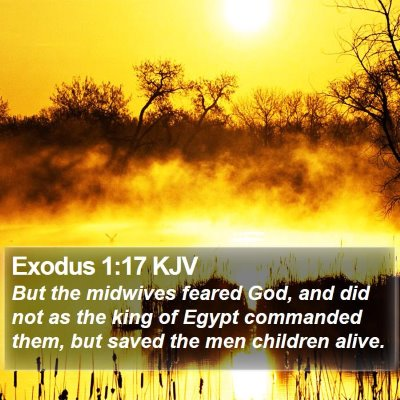 Exodus 1:17 KJV Bible Verse Image