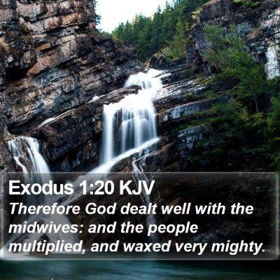 Exodus 1:20 KJV Bible Verse Image