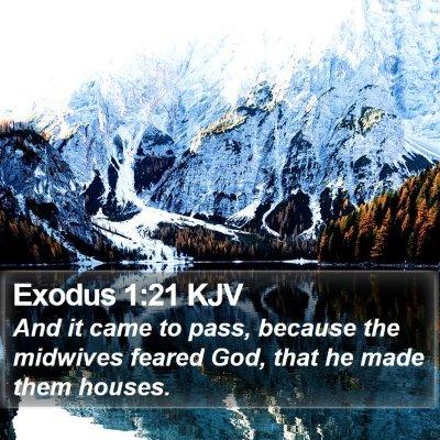 Exodus 1:21 KJV Bible Verse Image