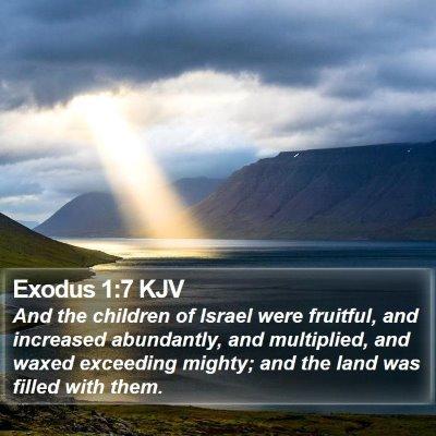 Exodus 1:7 KJV Bible Verse Image