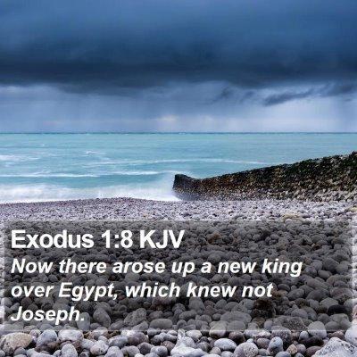 Exodus 1:8 KJV Bible Verse Image