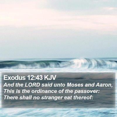 Exodus 12:43 KJV Bible Verse Image