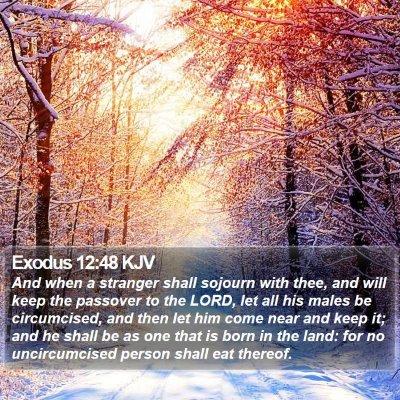 Exodus 12:48 KJV Bible Verse Image