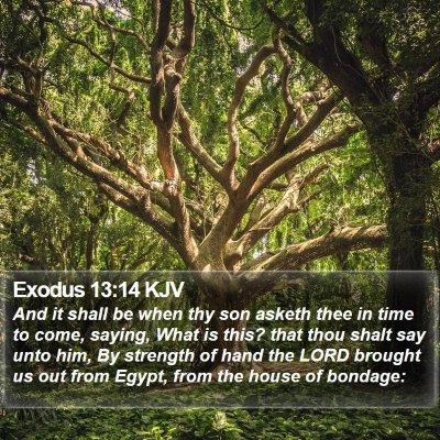 Exodus 13:14 KJV Bible Verse Image