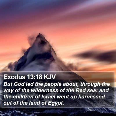 Exodus 13:18 KJV Bible Verse Image