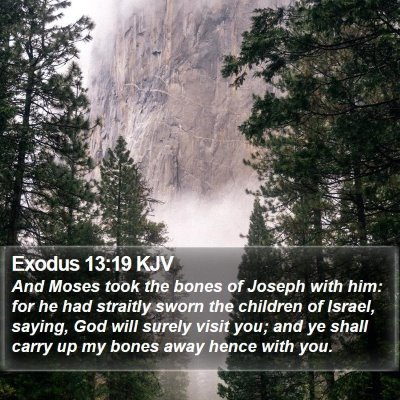 Exodus 13:19 KJV Bible Verse Image
