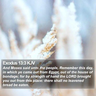 Exodus 13:3 KJV Bible Verse Image