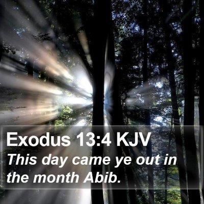 Exodus 13:4 KJV Bible Verse Image