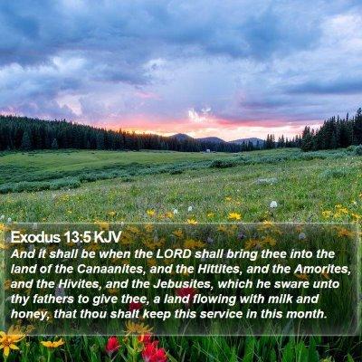Exodus 13:5 KJV Bible Verse Image