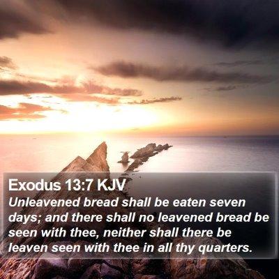 Exodus 13:7 KJV Bible Verse Image