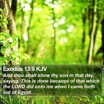 Exodus 13:8 KJV Bible Verse Image