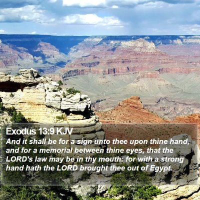 Exodus 13:9 KJV Bible Verse Image