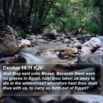 Exodus 14:11 KJV Bible Verse Image