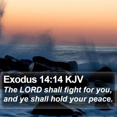 Exodus 14:14 KJV Bible Verse Image