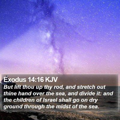 Exodus 14:16 KJV Bible Verse Image