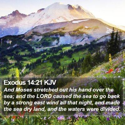 Exodus 14:21 KJV Bible Verse Image