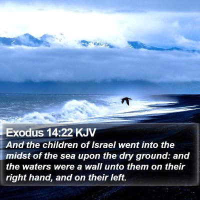 Exodus 14:22 KJV Bible Verse Image
