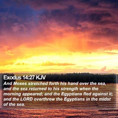 Exodus 14:27 KJV Bible Verse Image